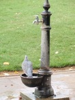 Uk-greater-london-london-kensington-chelsea-hyde-park-5-outdoor-fountain